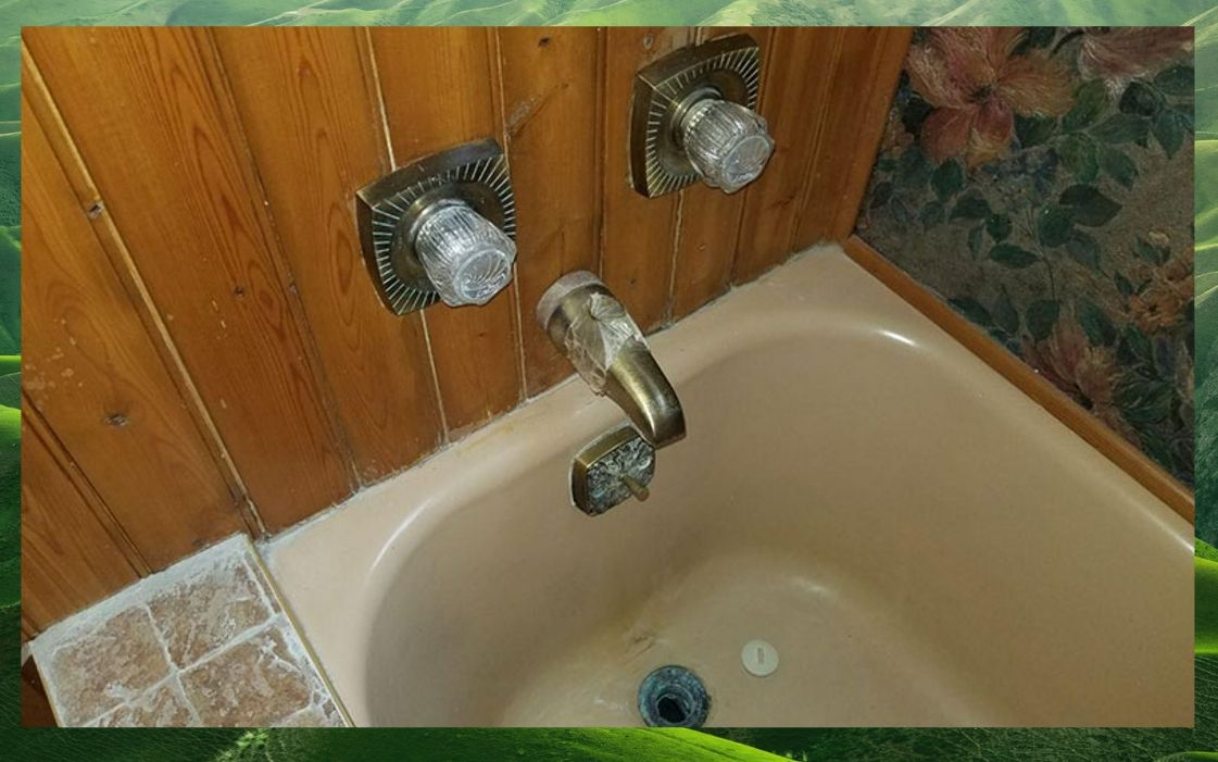 Bathroom green mold