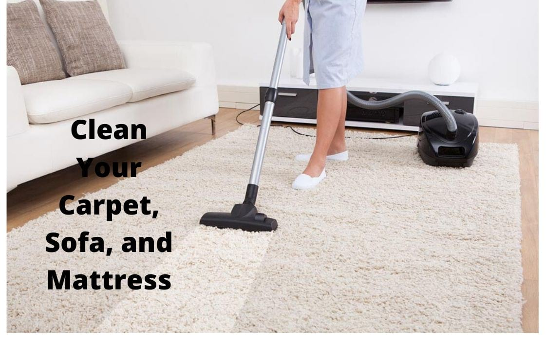 vacuum your home thoroughly