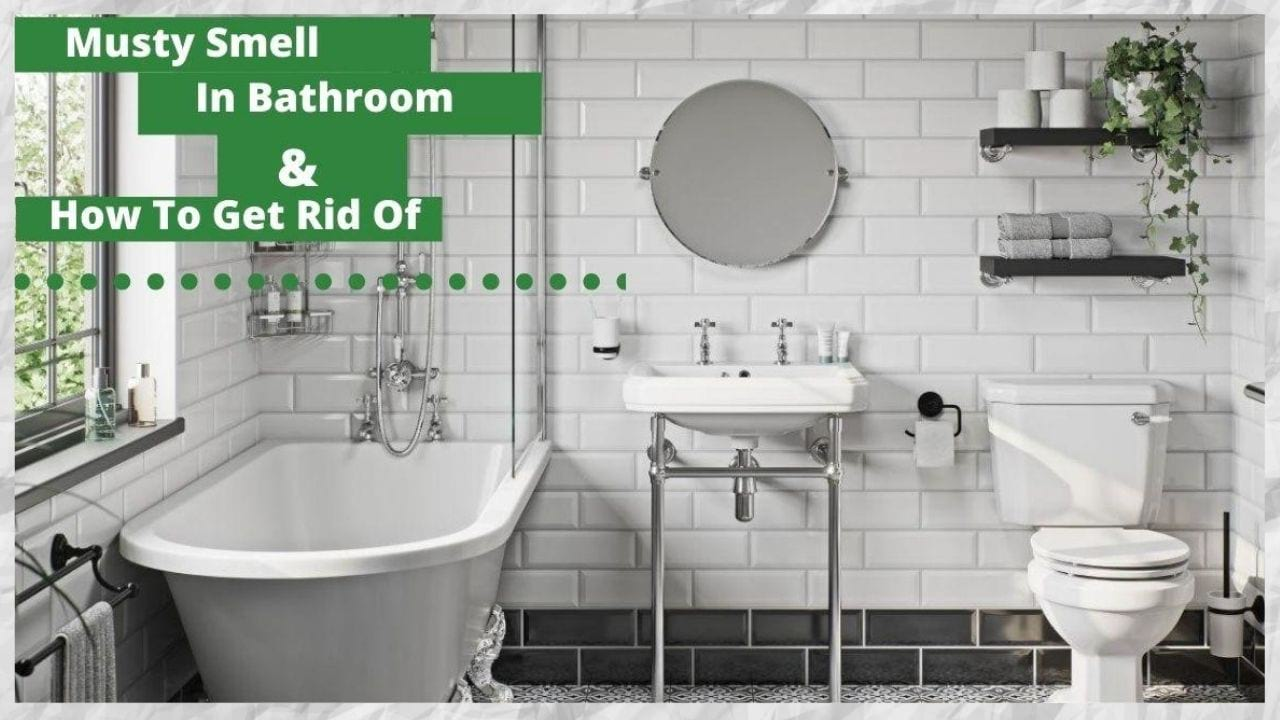 musty smell in bathroom Archives - Vacuum Seller