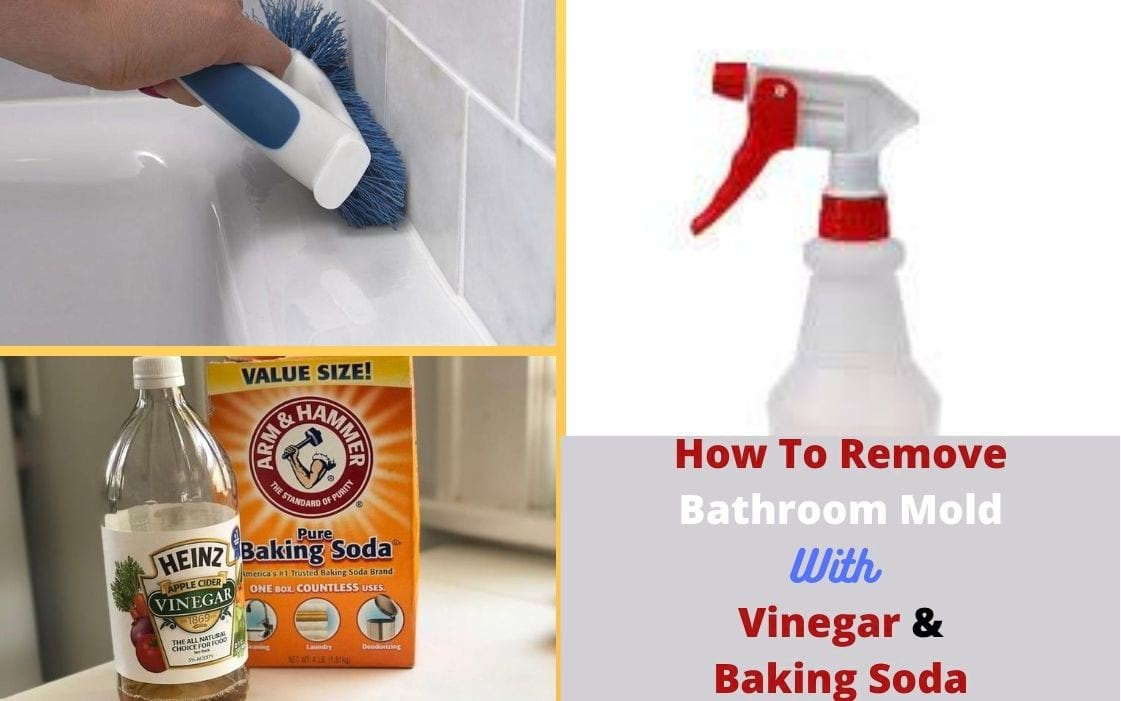 Musty Smell in Bathroom & How to Get Rid of - Vacuum Seller